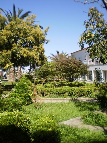 Jardim Traseiras